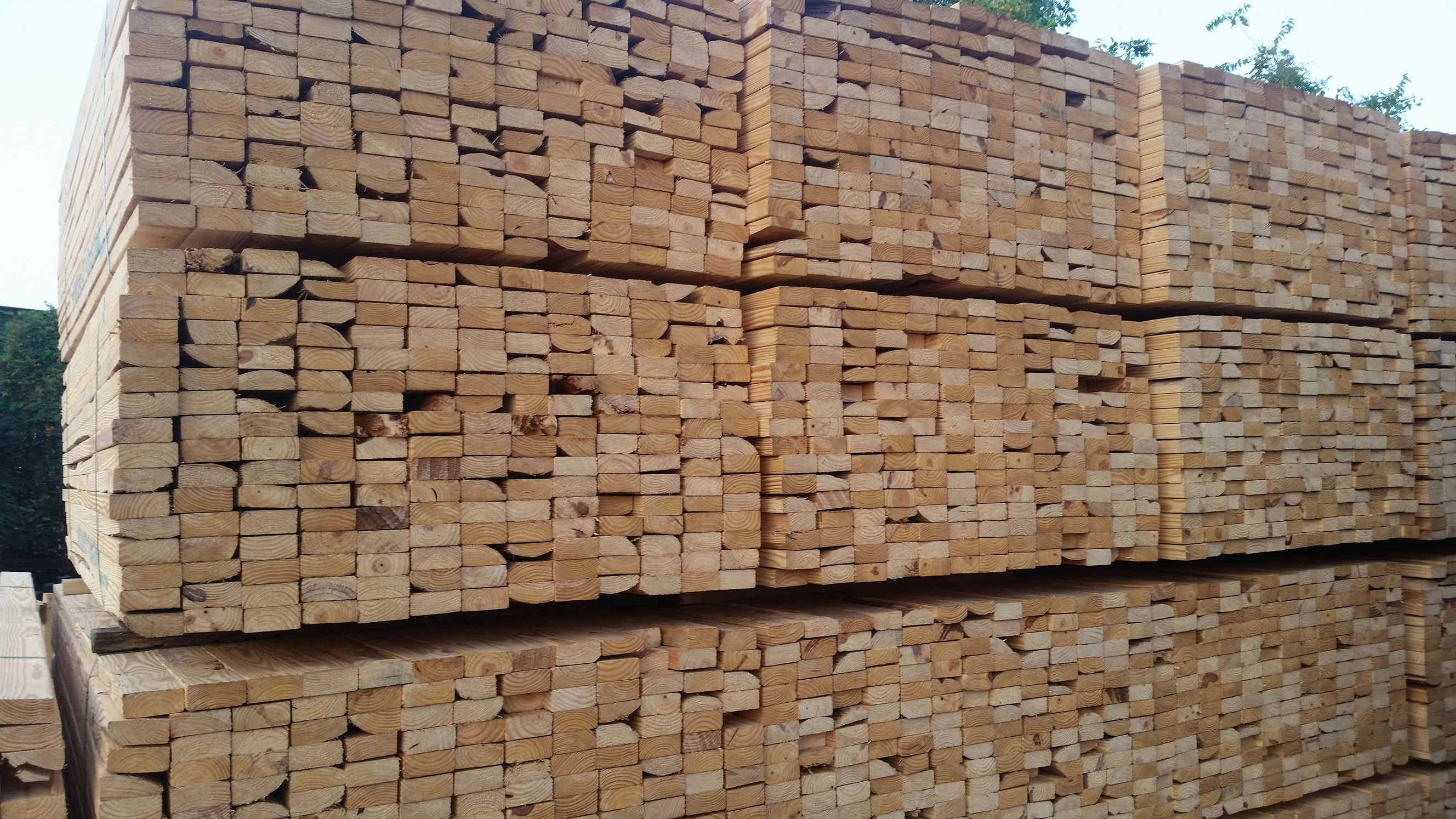From Purple Poplar to Thermally Modified Lumber, End Trims to Remnants, Check this page to find out what's available. Unique, Closeout, and One time deals available - High quality lumber provided to you at an affordable price. Over 20 different species.